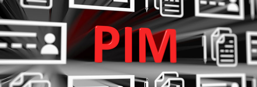 Lancer un PIM